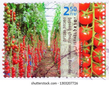ISRAEL - CIRCA 2011: An old used Israeli postage stamp issued in honor of the Israeli achievements in agriculture, showing tomato greenhouses; series, circa 2011