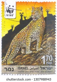 ISRAEL - CIRCA 2011: An old used Israeli postage stamp issued in honor of the Endangered Wildlife Species with inscription: Leopard. Series, circa 2011