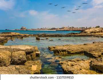 Israel. Ruins of ancient Caesarea. Flock of migratory birds flies in the blue sky. Concept of archeological and historical tourism