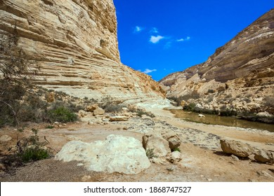 Israel.  The walls of the gorge are corroded by caves. Start route. The ravine is formed by the waters of the Qing River. The canyon Ein Avdat is the most beautiful in the Negev desert.