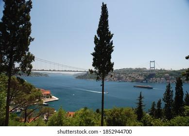 Istanbul Bosphorus landscape trees sea 2