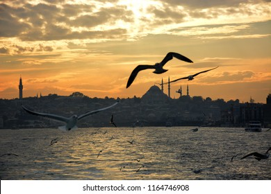 istanbul bosphorus and sunset