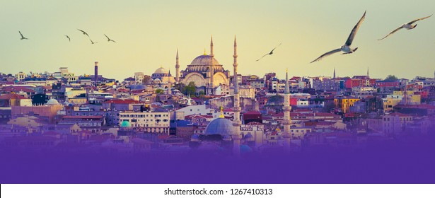 Istanbul cityscape with flying birds - panorama of turkish city with minarets of the Nuruosmaniye Mosque at skyline. Old muslim architecture in Fatih area with place for text bottom on violet color.
