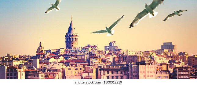 Istanbul cityscape  on sunset with Galata Tower at skyline and seagulls. Urban landscape of Istanbul with buildings of Beyoglu and Karakoy areas, travels background for your billboard about Turkey.
