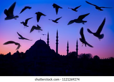 Istanbul silhouette and seagulls at sunset, Suleymaniye mosque,Istanbul,Turkey ,December 2017