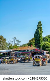 Istanbul, Turkey, 20 August 2018: Coach and Horses at Buyukada, Princes Islands district of Istanbul