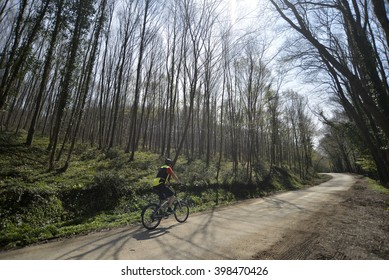 ISTANBUL, TURKEY, 30 MARCH 2016 A man riding a bicycle in Belgrad forest in Istanbul
