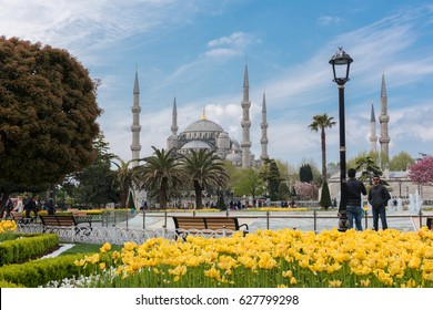ISTANBUL, TURKEY - APRIL 23, 2017: Tulip Festival in Sultahahmet Square. Tulips and Blue Mosque in Istanbul, Turkey.