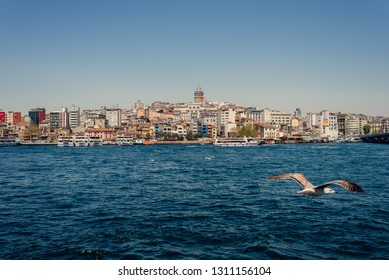 Istanbul, Turkey - April 9, 2018: Seagull flying over the bosphorus and view of the city on April 9, 20158 in Istanbul, Turkey.