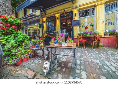 ISTANBUL, TURKEY: Beautiful decoration of street cafe in Kuzguncuk district with flowers and plants on May 5, 2018