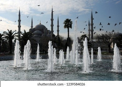 ISTANBUL, TURKEY - JANUARY 15, 2018: Fountains, flying birds and Blue mosque in the background