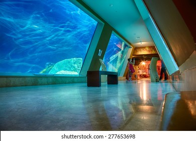 ISTANBUL, TURKEY JULY 10, 2014:  The interior of Istanbul Sea Life Aquarium TurkuaZoo. The entrance to the hall of Liberty Ship wreck.
