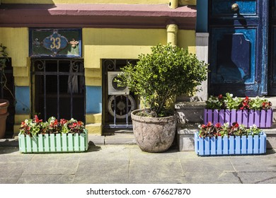 ISTANBUL, TURKEY - July 2017: Colorful street of Istanbul Sultan Ahmet area, flower pots decoration, colorful painted walls, street cafe entrance, Istanbul center, Turkey