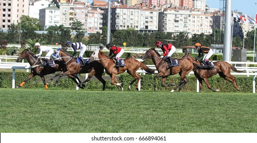 ISTANBUL, TURKEY - JUNE 25, 2017: Riders compete in Womens riding friendship run in Istanbul Horce Race, Veliefendi racetrack.
