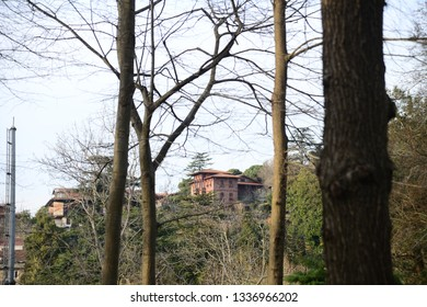 ISTANBUL, TURKEY - MARCH 9, 2019: Historical Beykoz Forest Social Facilities Public space with old plane tree in Beykoz, Istanbul
