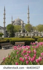 ISTANBUL, TURKEY - MAY 04, 2009: Park with tulips in the gardens and view of the Blue Mosque