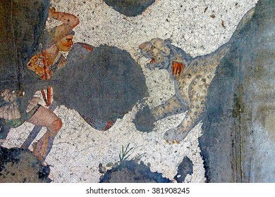 ISTANBUL, TURKEY - MAY 15, 2014 -Man fighting a leopard, partial mosaic, Great Palace Mosaic Museum,  in Istanbul, Turkey