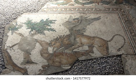 ISTANBUL, TURKEY - MAY 16, 2014 -Mythical griffin aattacking a deer, Great Palace Mosaic Museum,  in Istanbul, Turkey