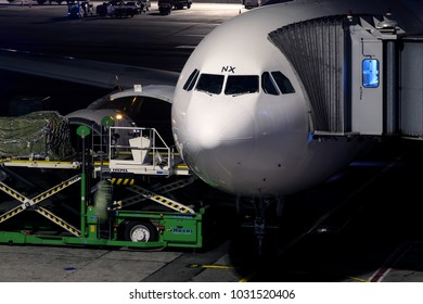 ISTANBUL, TURKEY - OCTOBER 2017: Airplane cargo loading at Istanbul Ataturk Airport (IST) on October 16, 2017 in Istanbul, Turkey.