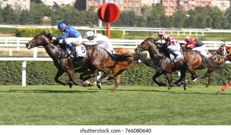 ISTANBUL, TURKEY - SEPTEMBER 03, 2017: Riders compete in a run in Longines International Racing Festival, Veliefendi racetrack.