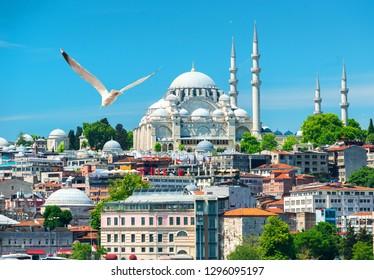 Istanbul and view on Suleymaniye mosque, Turkey