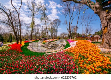 ISTANBUL/TURKEY- APRIL 15,2017: Traditional Tulip Festival in Emirgan Park, a historical urban park located in the Sariyer district of Istanbul, Turkey. Views Colorful tulips of the Emirgan Park.