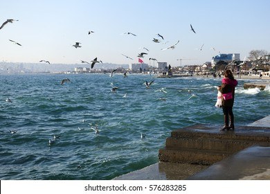 ISTANBUL,TURKEY-FEBRUARY 04,2017:Albatros coast in Buyukcekmece District.Turkish woman feeding seagulls in winter at Albatross coast