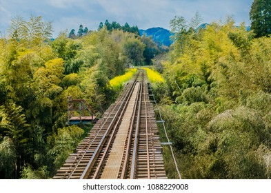Isumi Rail Otaki-machi Chiba Japan, Isumi Line in Chiba, Japan (A railroad in Japanese countryside with green field and yellow flowers.)