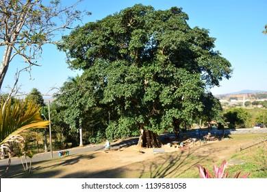 Itain park, Taubaté, São Paulo, Brazil