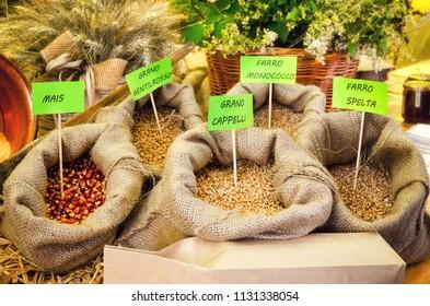 italian farmer market stall with different cereals: mail (corn), grano gentilrosso (gentle red wheat), grano cappelli (cappelli wheat), farro monococco (einkorn wheat) and farro spelta (spelt)
