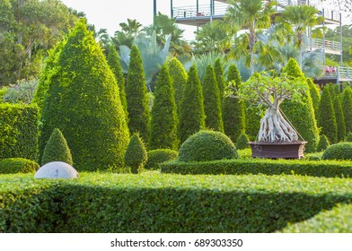 Italian Garden Design, regular gardens