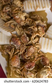 italian gastronomic Specialities, moleca little crab fried, Specialities of chioggia, venice italy