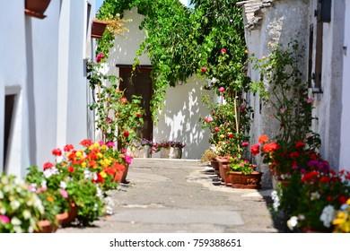 Italian style, houses decoration