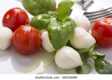 Italian style mozzarella, salad  and basil with olive oil on plate decorated