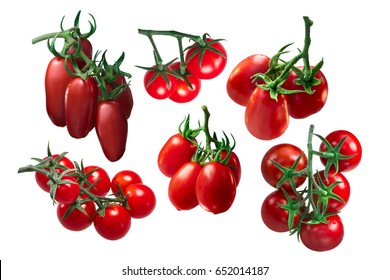 Italian tomatoes on the vine: San Marzano, Pachino, Roma, Grappolo. Clipping path for each cluster