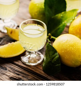 Italian typical digestive limoncello with fresh lemons, selective focus and square image