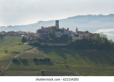 Italian village surrounded by vineyards seen from afar.