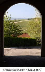 Italian vineyard seen through an arc.