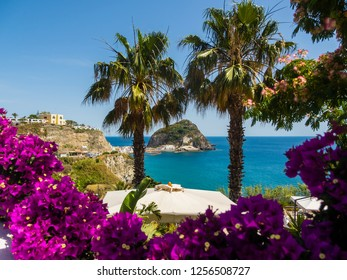 Italy, Campania, Gulf of Naples, Naples, Ischia, Forio, Port and Bay of Sant'Angelo
