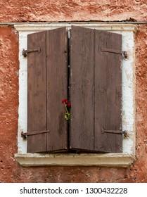 Italy Malcesine flower pop up between wooden shutters