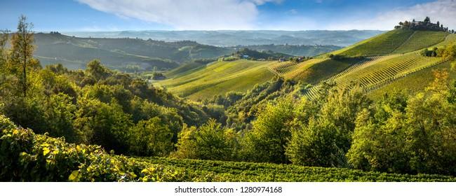 ITALY piedmont wineyards autumn landscape colors