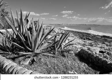 Italy, Sicily, Marina di Modica (Ragusa Province), Mediterranean sea, view of the sicilian East Southern rocky coastline