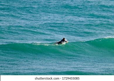Italie, Sicile, mer Méditerranée, Marina di Ragusa (province de Raguse); nage de surf à terre