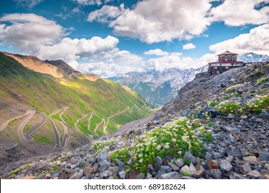 Italy, Stelvio National Park. Famous road to Stelvio Pass in Ortler Alps. Alpine landscape.