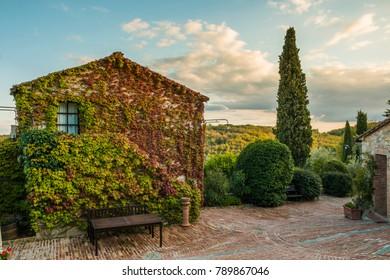 Italy trattoria in tuscany