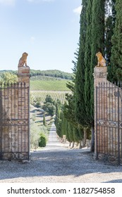 ITALY, TUSCAN - 03 SEPT: View from Frescobaldi's Castelgiocondo Estate in Tuscany, Italy, 03 September 2018.
