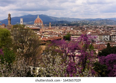 Italy Tuscany Florence spring panoramic view