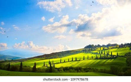 italy; tuscany landscape; hillside road, cypresses and fields