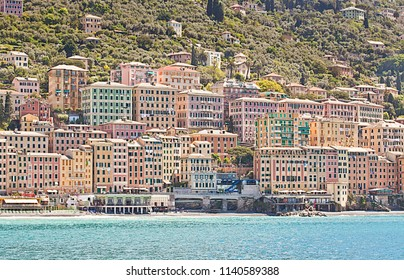 Italy, view of Camogli  fisher village with a picturesque architecture of the ancient painted houses on the Ligurian coast near Genoa, great tourist attraction in summer