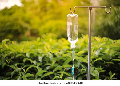 IV Drip ,Focus Drop on Focus in intravenous drip on white Natural background, infusion dripping drops.slow treatment in Hospital Morning Sunlight .Selective Focus
